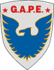 logo gape terceirizacao especializada small